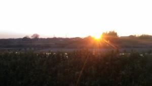 kokaigawa sunset
