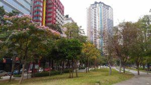 taichung-green4